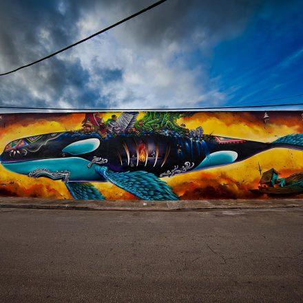 Miami: Big Walls Big Dreams