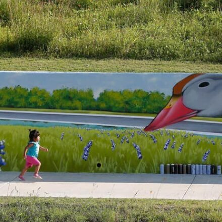 Sims Bayou Trail Mural
