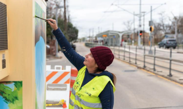The Leader: New mini mural series tackles city scourge